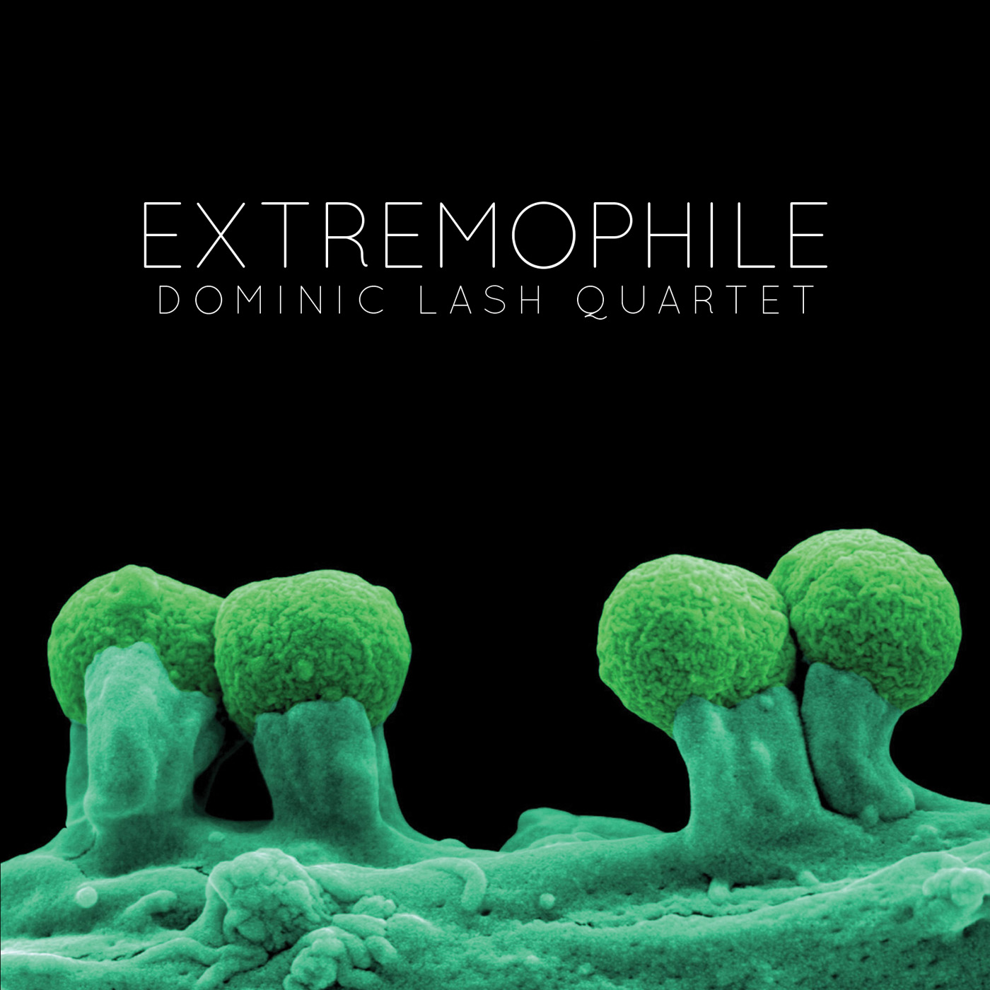 Extremophile by Dominic Lash Quartet